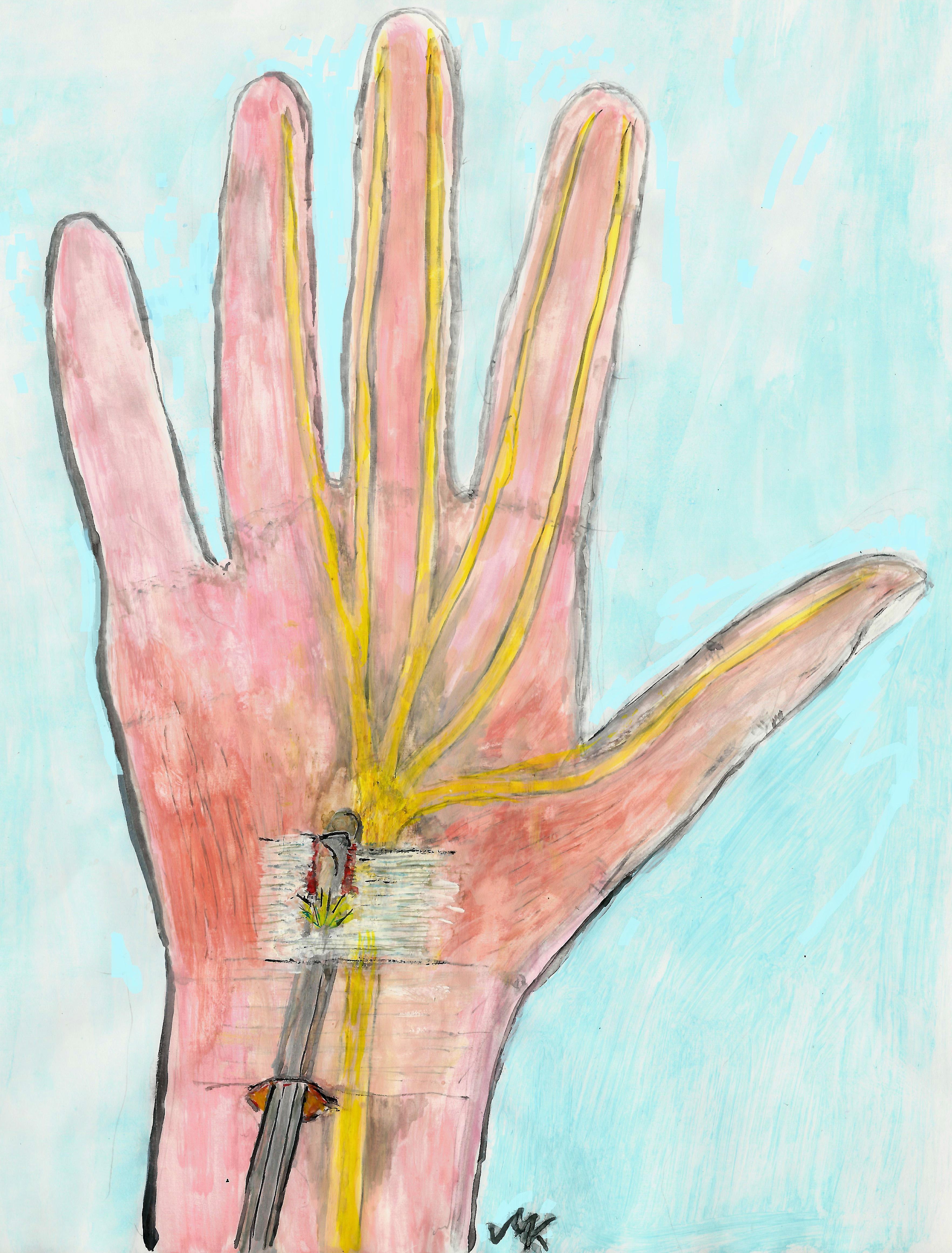 nervus medianus verlauf