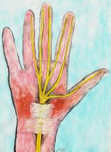 Verlauf des Nerven im  Handbereich